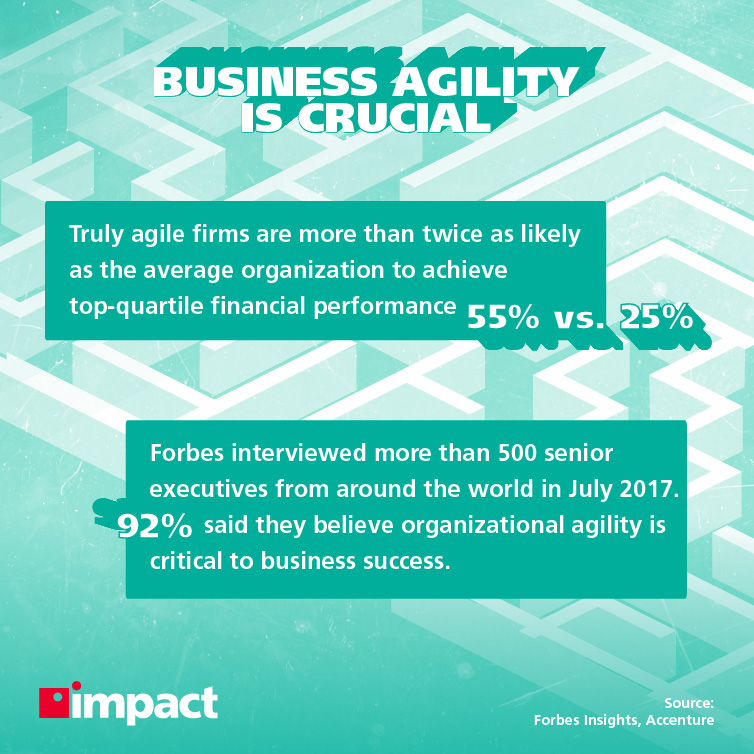 Statistics on success from business agility examples