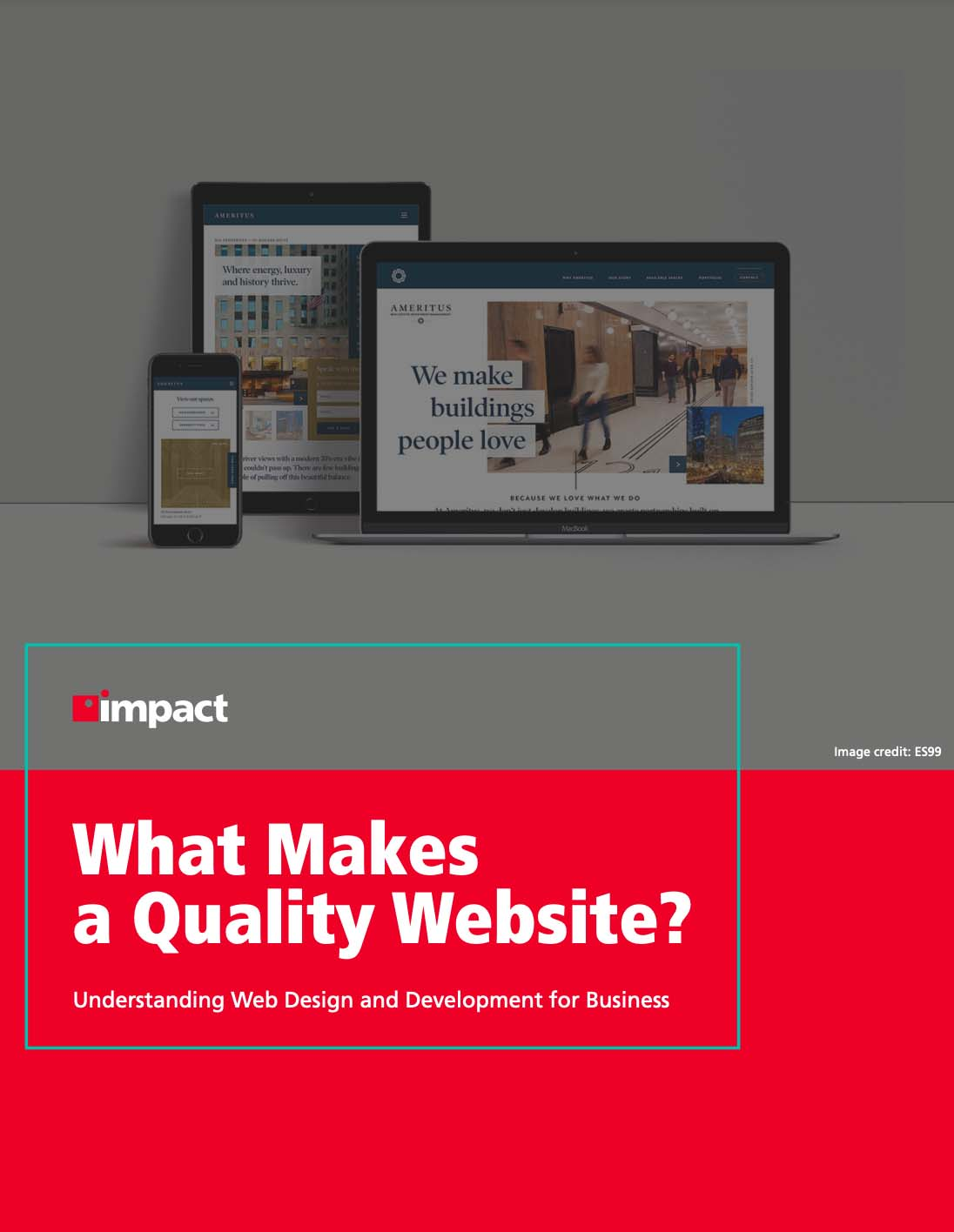 Cover for ebook: What Makes a Quality Website?